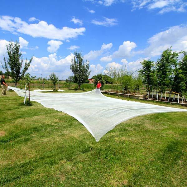 Plantra AviGard Hex Mesh Anti-Bird Net For Fruit Trees & Berry Bushes -  Super Premium (Heavy Gauge) - 32 8ft x 32 8ft
