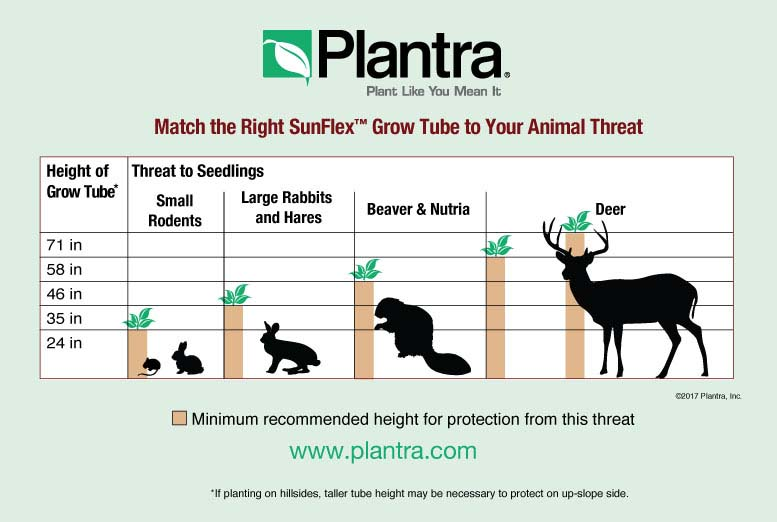 See the chart below to match grow tube height to deer and other animal  threats.