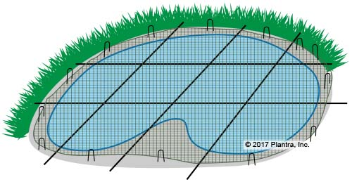 Crop Saver Pond Netting Protects Koi Goldfish From Herons Plantra