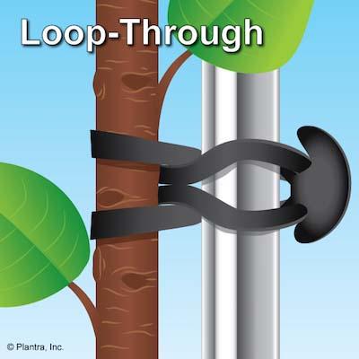 Plantra Stretch-Lock Plant Tying System - #20 Size (125-Pack)