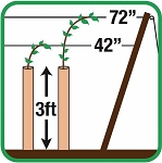 Plantra Jump Start Greenhouse Grow Tube For Vines - 900mm (3ft) C-Style, (20-Pack)