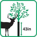 Plantra Trunk Saver Screen Mesh Tree Guard - Sapling Protection, Black, 43-in. Ht. (6-Pack)
