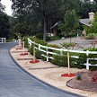 Started In SunFlex, These Healthy And Fast Growing Ornamental Trees Line Driveway To Add Beauty To Landscaped Front Yard
